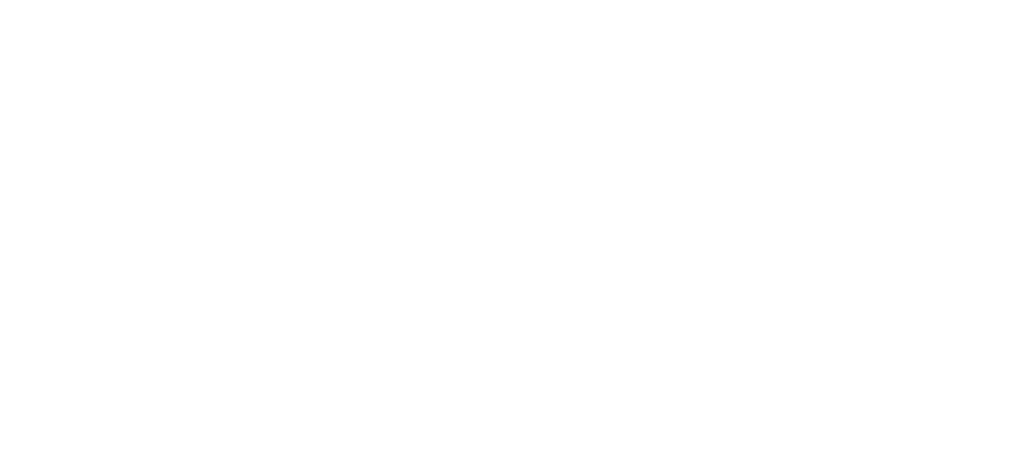 Telefonakquise - Auto